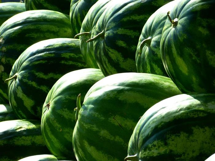 melons 197025 1920